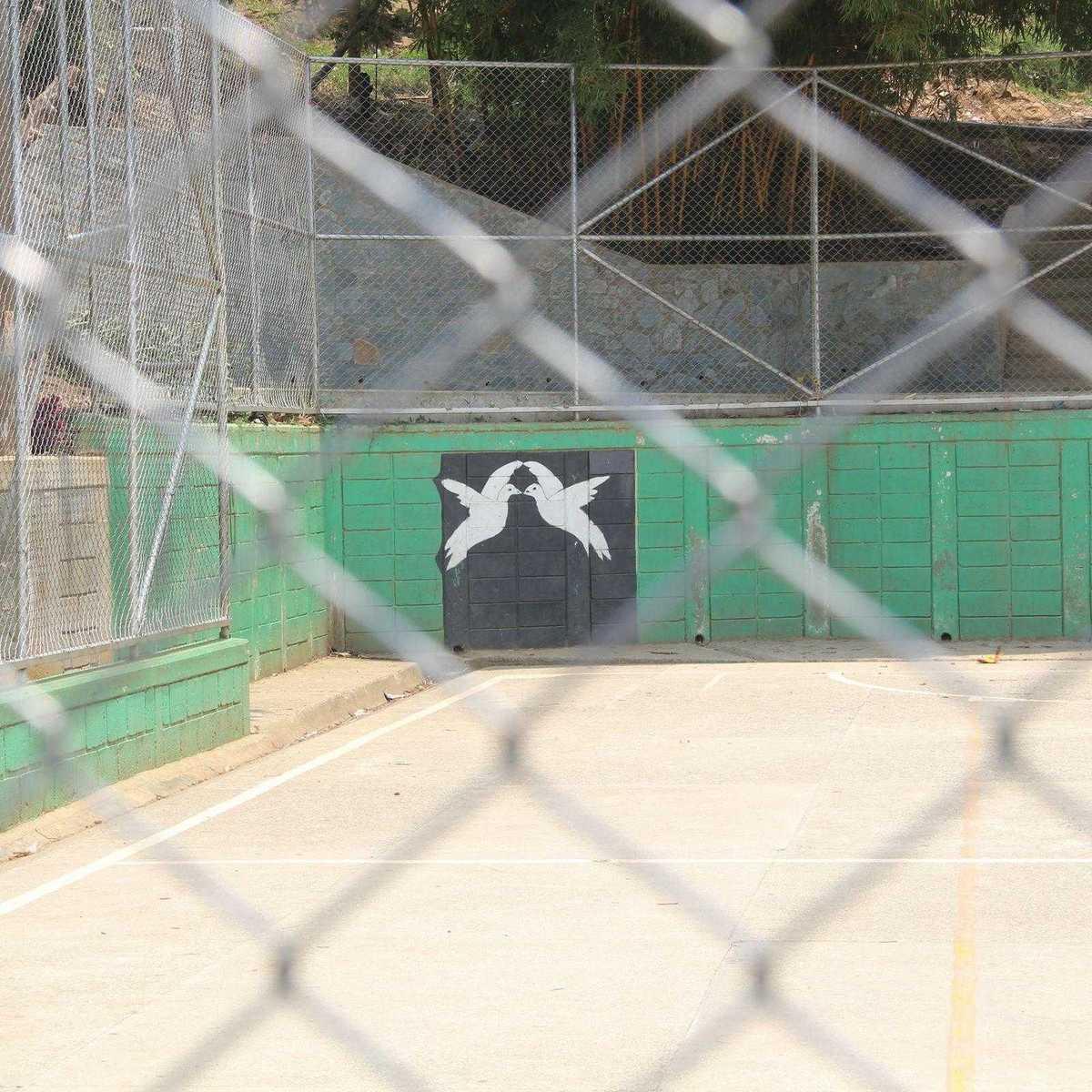 Bild von zwei Friedenstauben auf dem Fußballplatz in der CDB